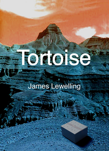 Tortoise cover by Ellen Harvey